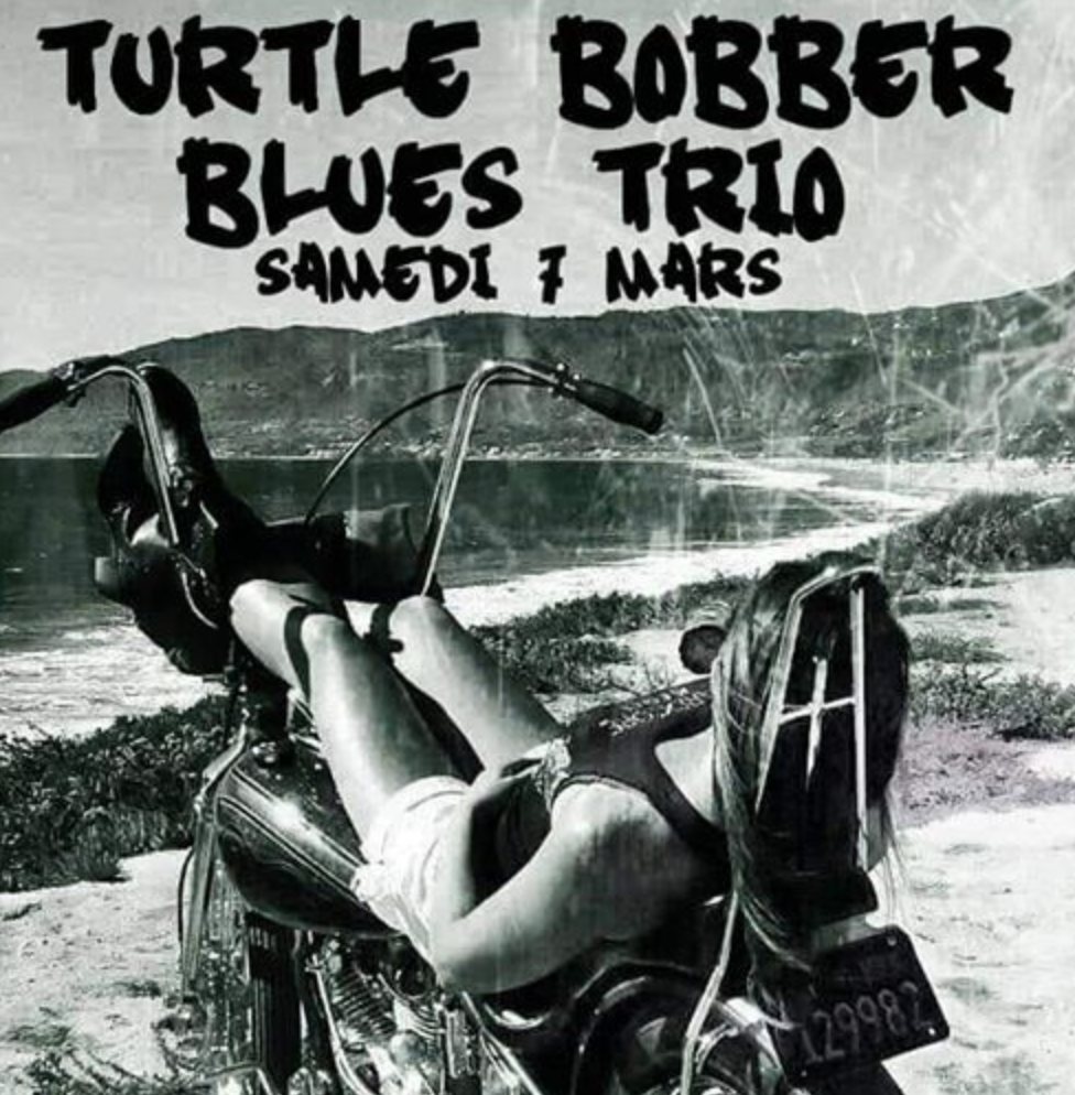 7 Mars – Turtle blues St Louis